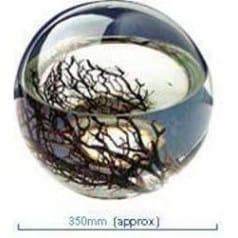 Ecosphère ronde 35 cm Atlantique
