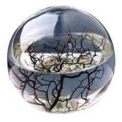 Ecosphère ronde 10 cm Atlantique