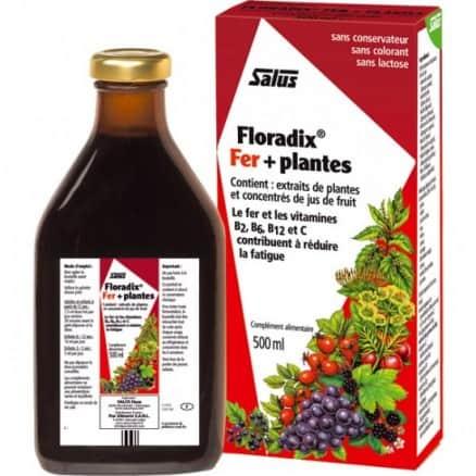 Floradix Fer + Plantes (Vigueur & énergie)