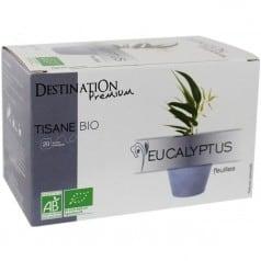 Tisane Eucalyptus