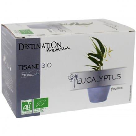 Destination Tisane Eucalyptus x20