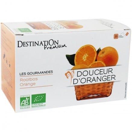 Destination Infusion Gourmande Douceurs d'Oranger x20