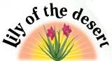 lily of desert.jpg