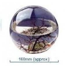 Ecosphère ronde 16 cm Atlantique
