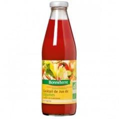 Cocktail de Jus de Légumes