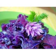 L'assiette de Violetta
