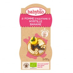 Bol Fruits Pomme d'Aquitaine, Myrtille, Banane babybio
