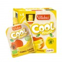 Cool Fruits Pomme Banane + Acerola