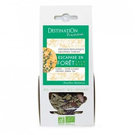 Infusion Forêt