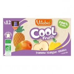 12 Gourdes Cool Fruits Pomme Mangue Ananas
