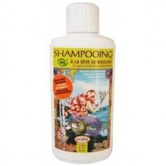 Shampooing à la Sève de Bouleau