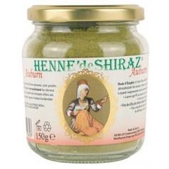Henne de Shiraz - Auburn
