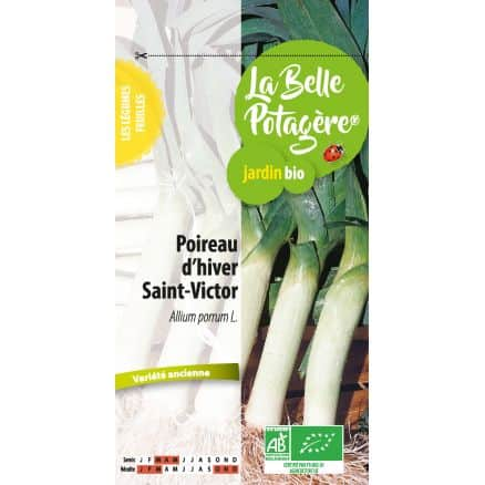 Poireau d'Hiver Saint Victor