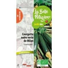Courgette Noire Verte de Milan