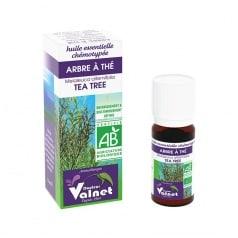 Huile essentielle bio arbre à thé