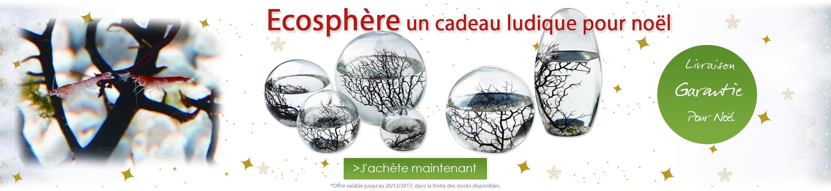 Ecosphère un cadeau ludique pour Noël